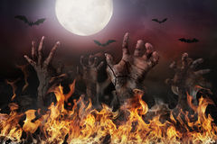 Zombie hand rising out of the ground. Halloween background with zombie hand rising out of the ground Royalty Free Stock Photos