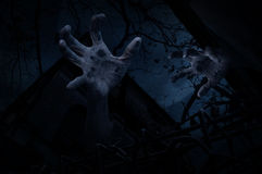 Zombie hand rising out from old grunge castle over dead tree stock photo