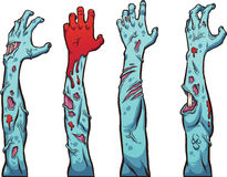 Zombie hands. And arms. Vector clip art illustration with simple gradients. Each on a separate layer Royalty Free Stock Images