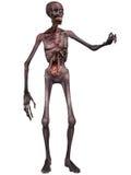 Zombie - het Cijfer van Halloween Royalty-vrije Stock Afbeelding