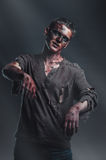 Zombie is in the light of the moon. Scary zombie is in the light of the moon Stock Images