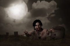 Zombie rising from graveyard. Halloween concept stock image