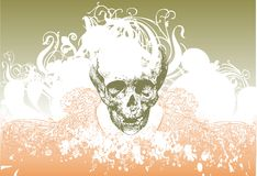 Zombie skull illustration royalty free stock images