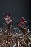 Zombie stretching his creepy hands from the grave Stock Photos