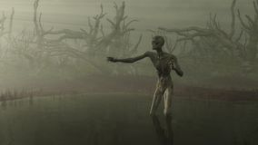 Zombie in the Swamp. Undead zombie in a misty swamp surrounded by twisted tree stumps reaching towards rays of light, 3d digitally rendered illustration Royalty Free Stock Photos