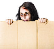 Zombie woman peering out. Zombie woman with injuries peering out of cardboard box at Halloween with space for added text Stock Image