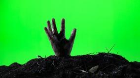 Zombiefrauenhand, die vom Grundgrab auftaucht Ein grimmiger Minireaper, der eine Sense anhält, steht auf einem Kalendertag, der g stock video footage