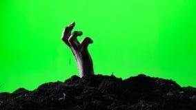 Zombiefrauenhand, die vom Grundgrab auftaucht Ein grimmiger Minireaper, der eine Sense anhält, steht auf einem Kalendertag, der g stock footage