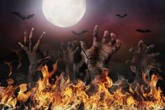 Zombiehand, die aus dem Boden heraus steigt Lizenzfreie Stockfotos