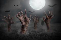 Zombiehand die uit de grond toenemen Stock Foto