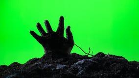 Zombiehand, die vom Boden auftaucht Grüner Bildschirm 007 stock footage