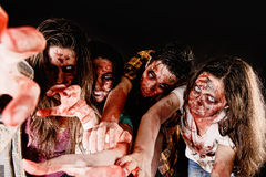 Zombies. Isolated in dark background Stock Photography