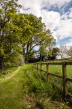 Zomer onderaan de weg in het Engelse platteland Royalty-vrije Stock Foto's