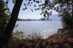 Zomer op Fraser River royalty-vrije stock fotografie