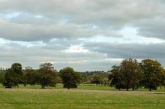 Zomerlandschap in Engeland Royalty-vrije Stock Foto's