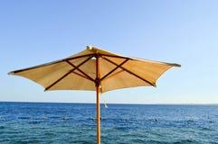 Zon-beschermend mooie natuurlijke die paraplu's van gele stof worden gemaakt tegen droge takken tegen de blauwe hemel, zoute over Royalty-vrije Stock Afbeeldingen