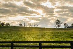Zon die door Wolken over een Groen Gebied in recente Middag glanzen Stock Foto's