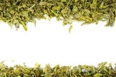 Zon-Dired Sabah Snake Grass-bladeren schikken hoger en lager landschap stock afbeeldingen