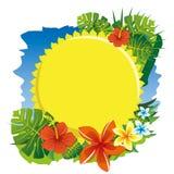 Zon en bloemen Stock Afbeeldingen