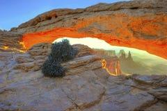 Zon het toenemen mesaboog, bogen nationaal park, Utah, de V.S. Stock Foto
