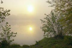 Zon in mist royalty-vrije stock afbeeldingen