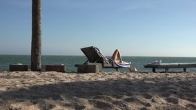 Zon, Overzees, Wind en Strand stock video