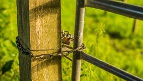 Zon van de de winter de vroege ochtend op paddock cate met slot Royalty-vrije Stock Foto