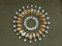 Zon van shells wordt gemaakt die Royalty-vrije Stock Foto's