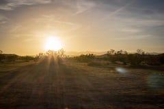 Zon in woestijn royalty-vrije stock fotografie
