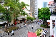 Zona罗莎,一个充满活力的世界性邻里在墨西哥城 库存照片