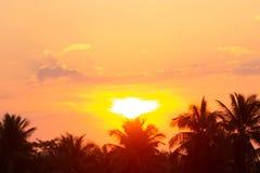 Zona caliente anaranjada clara del sol de la ma?ana fotografía de archivo libre de regalías