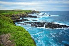 Zona costiera di Phillip Island il paesaggio di Nobbies trascura le rocce della guarnizione Fotografia Stock Libera da Diritti