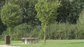 Zona de descanso verde y soleada Fotografía de archivo