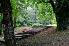 Zona de descanso y pasos, lagos Plitvice, Croacia Fotos de archivo libres de regalías