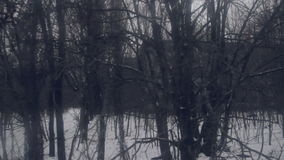 Zona de exclusión de Pripyat Chernóbil del fantasma en el invierno almacen de video