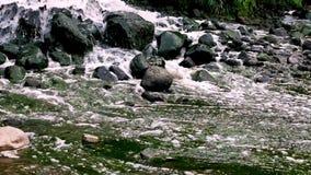 Zona de mezcla de la descarga de aguas residuales de las aguas residuales urbanas Contaminaci?n del r?o Descargas de la ciudad Co almacen de video