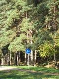 Zona de recreo del bosque Fotos de archivo