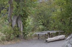 Zona de recreo en el banco del río Mertvovod foto de archivo