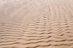Zona de recreo de vehículos del estado de las dunas de Oceano Fotografía de archivo libre de regalías