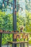 Zona del inconformista, ontop de madera de la tabla con poco cactus y silla de madera Imagen de archivo