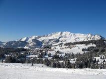 Zona di corsa con gli sci vicino a Amden immagine stock libera da diritti