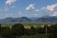 Zona di montagna Fotografia Stock