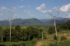 Zona di montagna Fotografia Stock Libera da Diritti