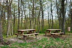 Zona di picnic Fotografie Stock Libere da Diritti