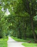 Zona di ricreazione nella foresta Fotografia Stock