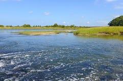Zona di transizione dell'estuario dove l'acqua dolce incontra l'acqua salata Immagine Stock