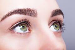 Zona femenina y frentes del ojo con maquillaje del día Imágenes de archivo libres de regalías