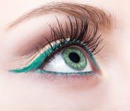 Zona femminile e fronte dell'occhio con uguagliare trucco verde dell'eye-liner Immagine Stock Libera da Diritti