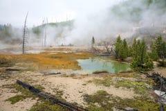 Zona geotermica, Yellowstone fotografia stock libera da diritti