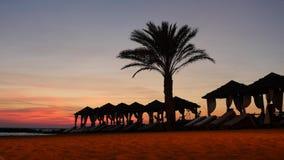 Zona hermosa del salón en la playa de Chipre con las palmeras y las tiendas en el fondo pintoresco de la puesta del sol metrajes